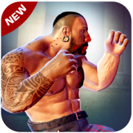 Romeo Street Fighter APK