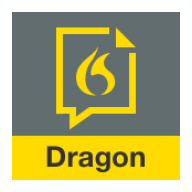 Dragon Anywhere APK