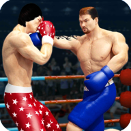 Tag Boxing Wrestling APK