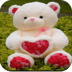 Cute Teddy Bear wallpaper APK