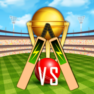 Real World Cricket Tournament APK