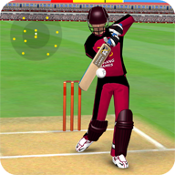 Smashing Cricket APK