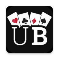 Ultimate Bridge APK