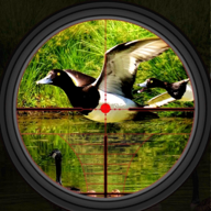 Duck Hunting 2019 APK