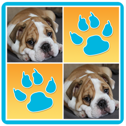 Dogs Memory Game APK