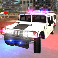 Real US Police Sport Car Game APK