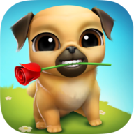 Louie the pug APK