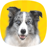 Real Pets: Dogs APK