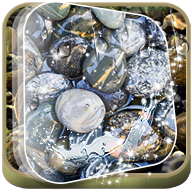 Stones in Water Magic Touch APK