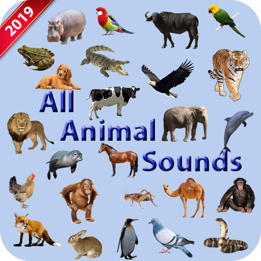 All Animal Sounds APK