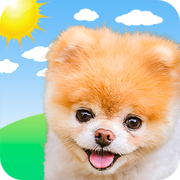 Boo Weather APK