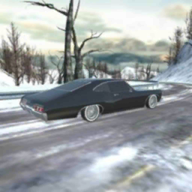 Real Car Simulator APK