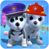 Talking Husky Dog APK