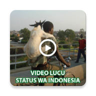 Video Lucu Status APK