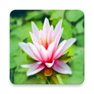 Breathing Relaxation Exercices APK